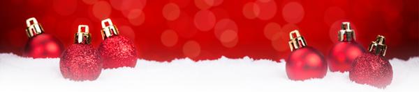 Frohe Weihnachten wünscht Micro Trace Minerals
